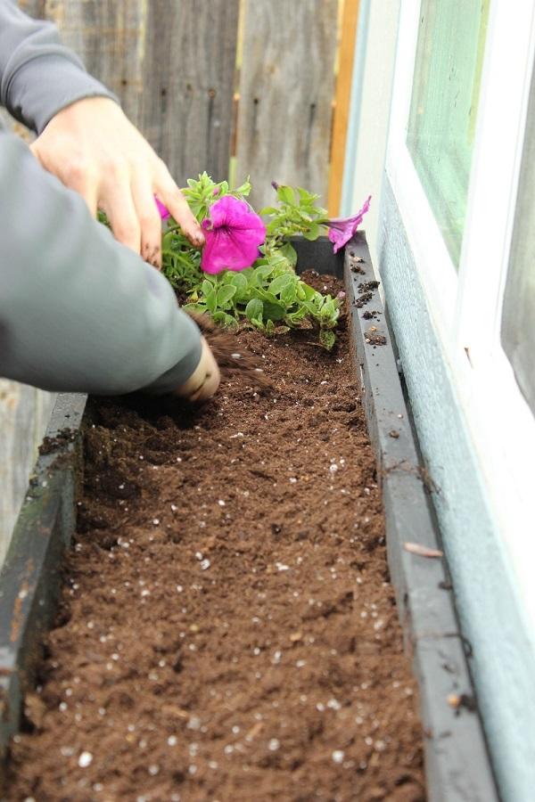 paso-a-paso-para-montar-una-jardinera-en-la-ventana-06