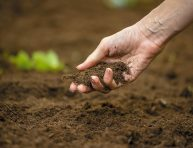 imagen 6 consejos para tener un super suelo