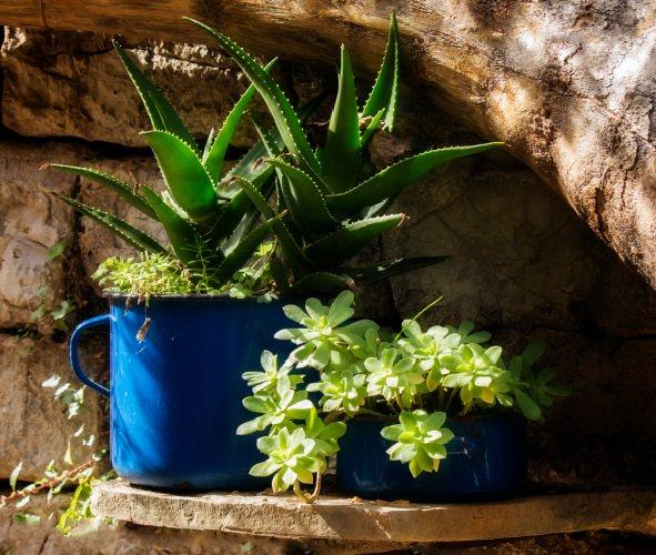decora-tu-jardin-con-utensilios-de-cocina-16