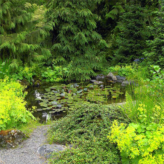 ideas-faciles-para-embellecer-tu-jardin-06