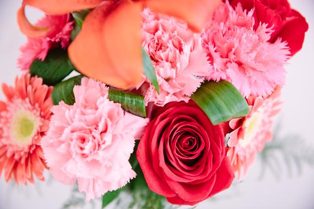 flores-10
