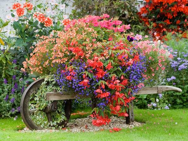 consejos-basicos-para-disfrutar-de-un-bonito-jardin-02