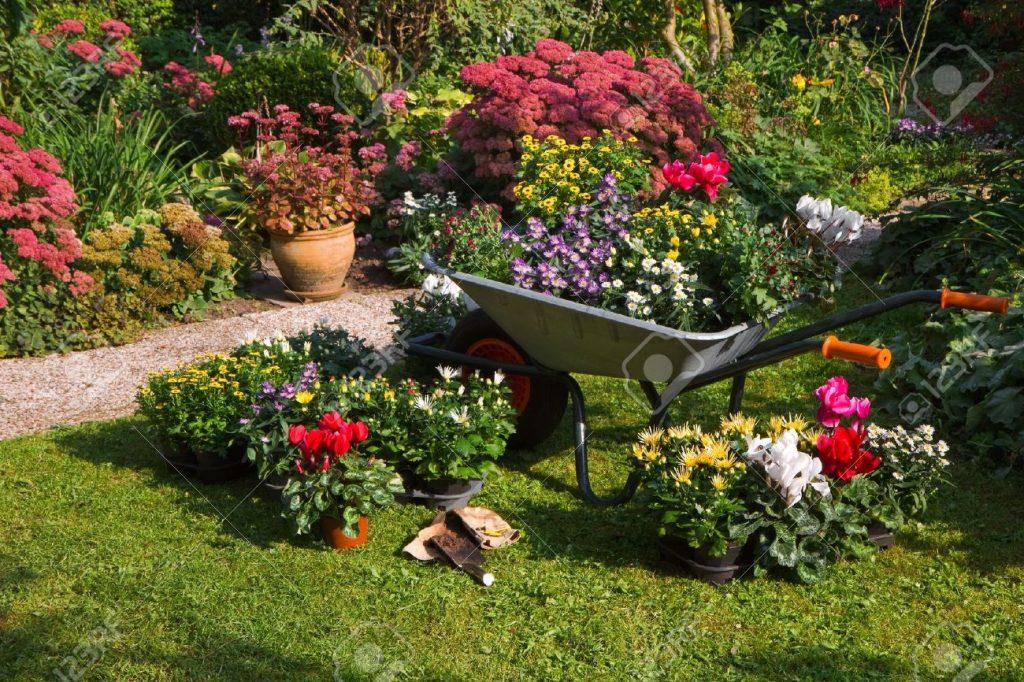 Consejos b sicos para disfrutar de un bonito jard n for Que es un jardin ornamental
