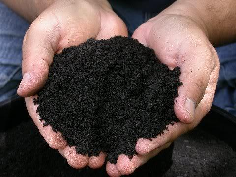 guia-basica-de-los-fertilizantes-04