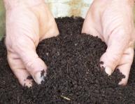 imagen Guía básica de los fertilizantes