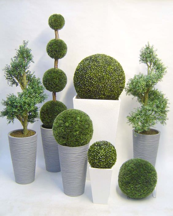 decora-tu-jardin-con-topiarios-08