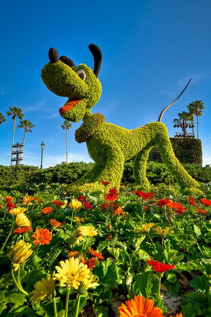 decora-tu-jardin-con-topiarios-09