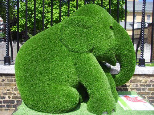 decora-tu-jardin-con-topiarios-10