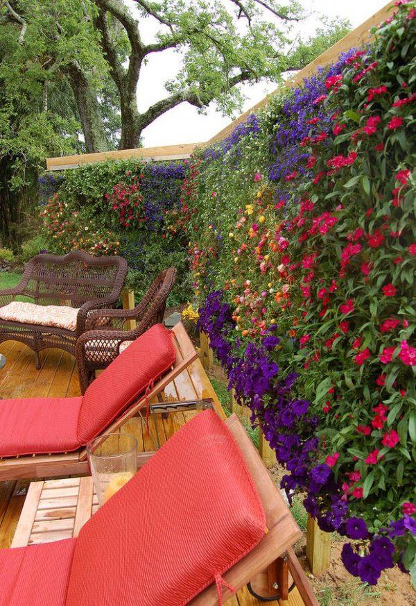 mejora-la-privacidad-de-tu-jardin-con-plantas-04