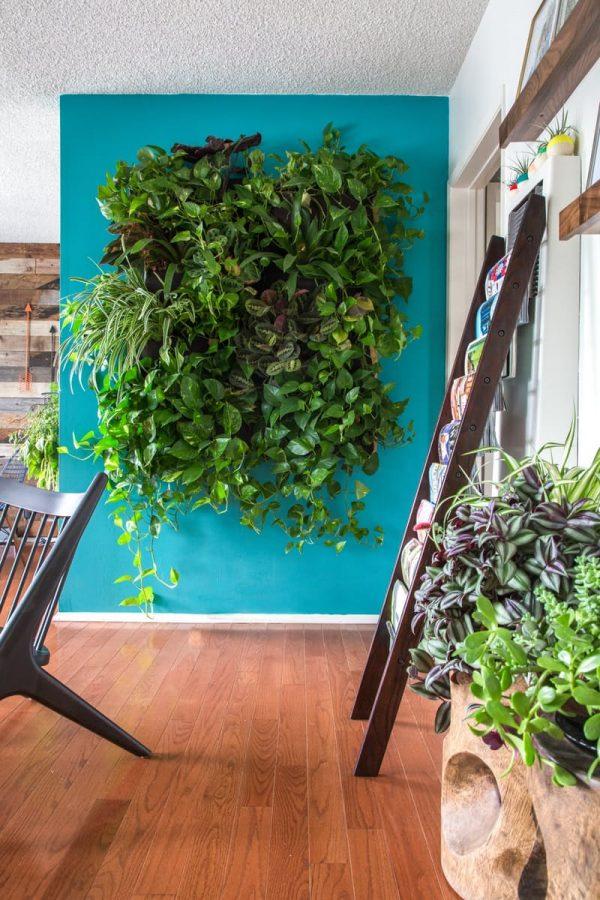 Propuestas para crear un jard n vertical for Como se hace un jardin vertical