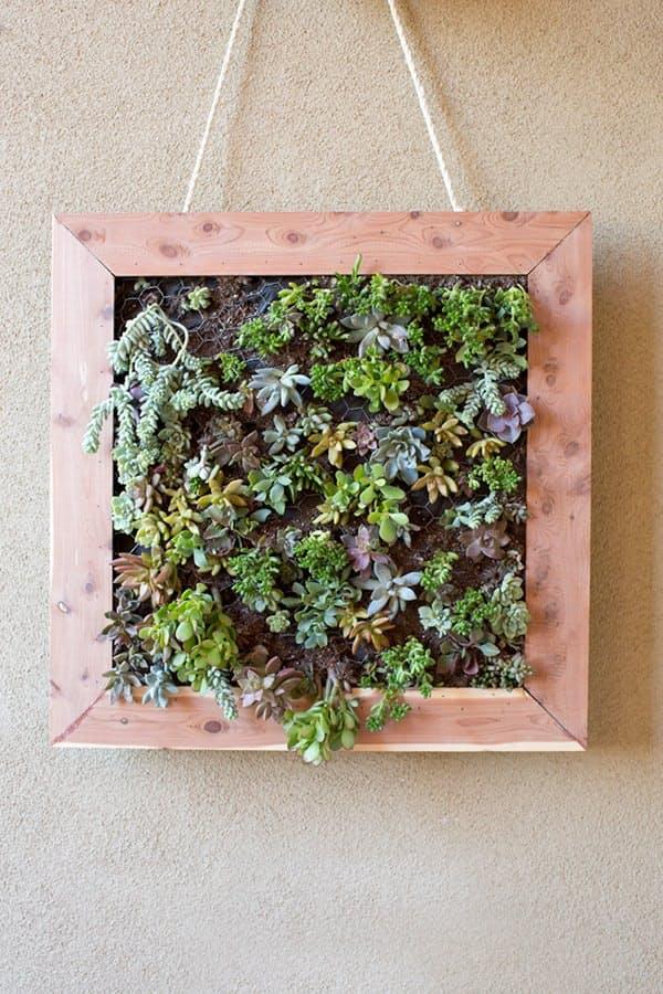 Como hacer jardines verticales materiales para jardin for Que es un jardin vertical