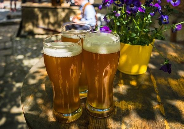 7 uses of beer in gardening 2
