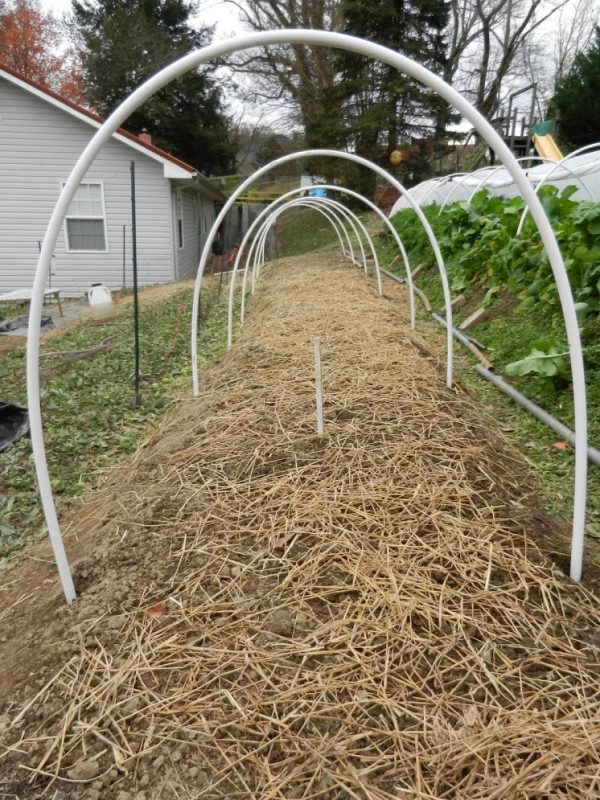 How to build a tunnel of cultivation 7