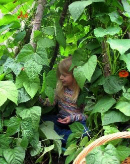 How to build a playhouse natural 1