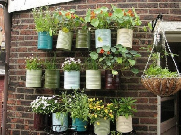 Ideas for creating a garden on the balcony 2