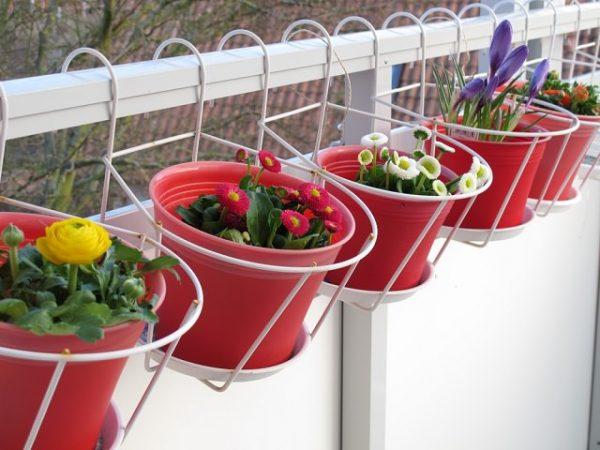 tambin es muy habitual aprovechar la barandilla del balcn para colgar macetas y jardineras para ello una gran variedad de accesorios que