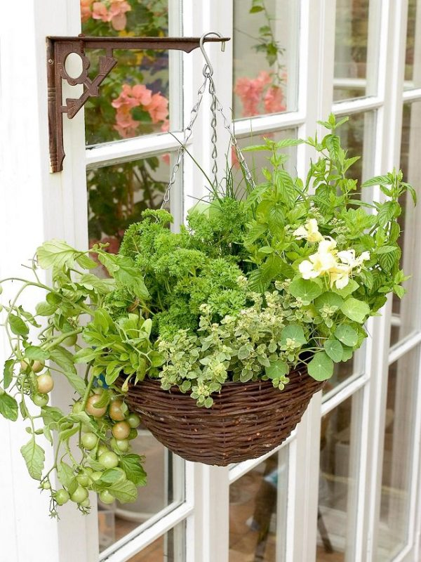 Ideas for creating a garden on the balcony 4