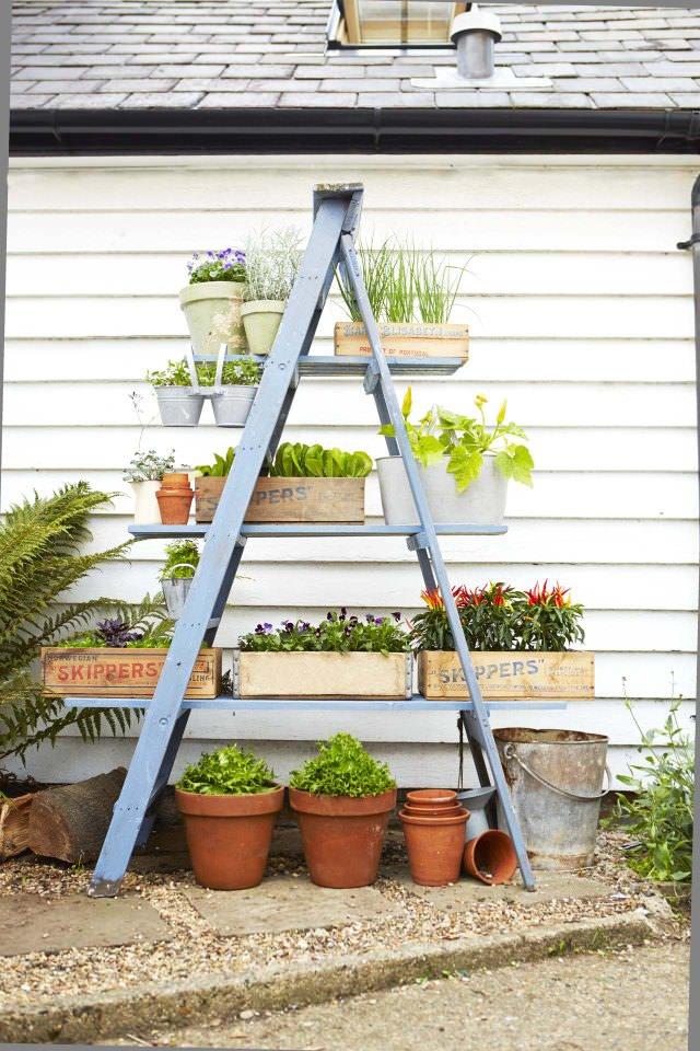 Ideas for creating a garden on the balcony 6