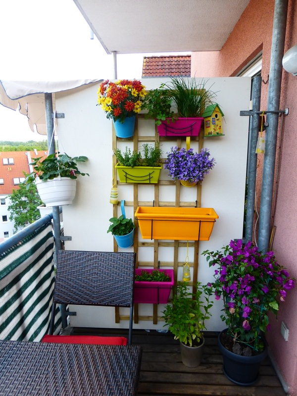 Ideas for creating a garden on the balcony 7