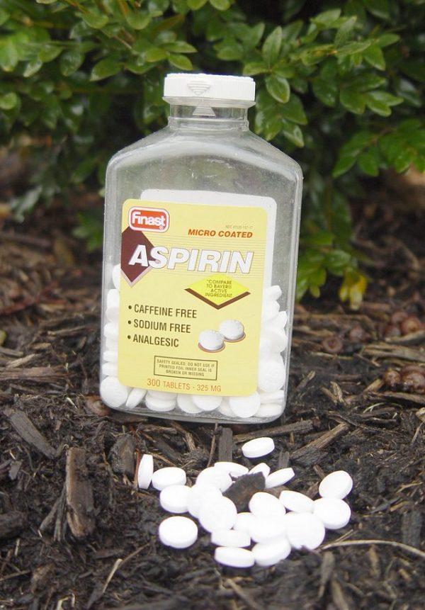 Uses of aspirin in the garden 1