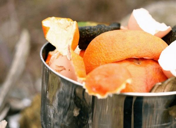 8 uses the rinds of the citrus fruits in the garden 3