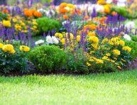imagen Cosas que hacer en primavera para tener un jardín perfecto