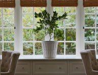 imagen 11 cuidados invernales para tus plantas de interior
