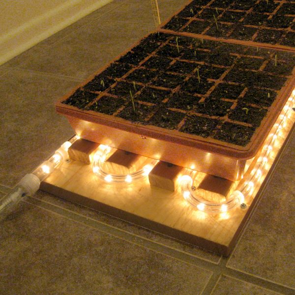 How to make a carpet of heat to seedlings 1