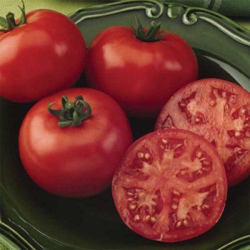 Varieties of tomatoes to grow in pots 3