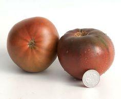 Varieties of tomatoes to grow in pots 25
