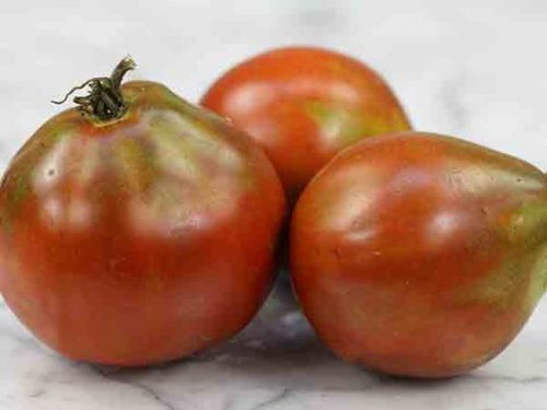 Varieties of tomatoes to grow in pots 21