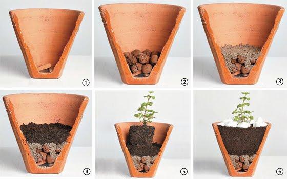 Assemble a herb garden in a pot 3