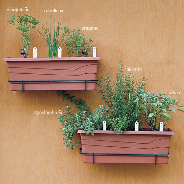 Assemble a herb garden in a pot 4