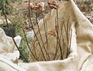imagen 14 usos de la tela de arpillera en el jardín