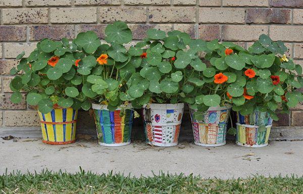 guía de jardinería. información, ténicas y consejos útiles - part 28