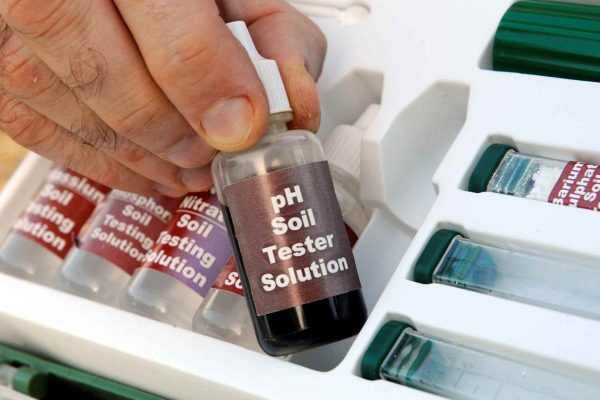 How to measure the pH of the soil 3