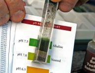 imagen Cómo medir el pH del suelo