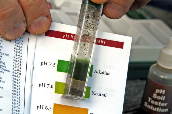 How to measure the pH of the soil 4