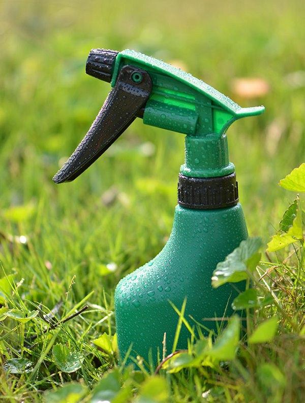 6 uses of glycerine in the garden 2
