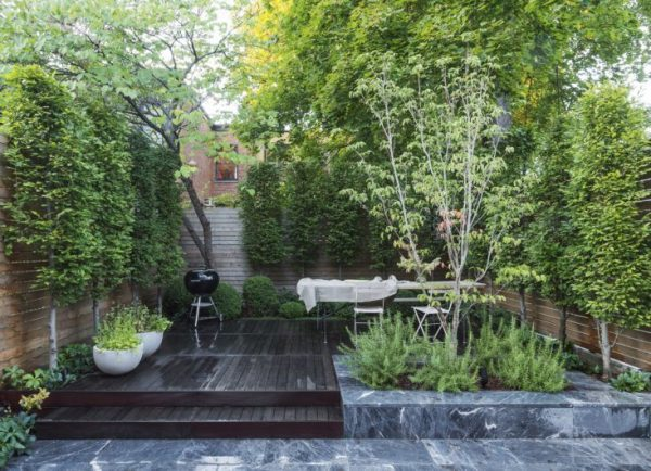 Tips to make your garden appear larger 3