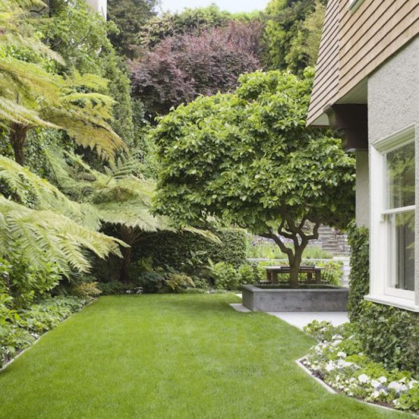 Tips to make your garden appear larger 4