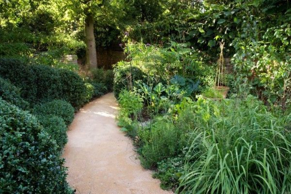 Tips to make your garden appear larger 5