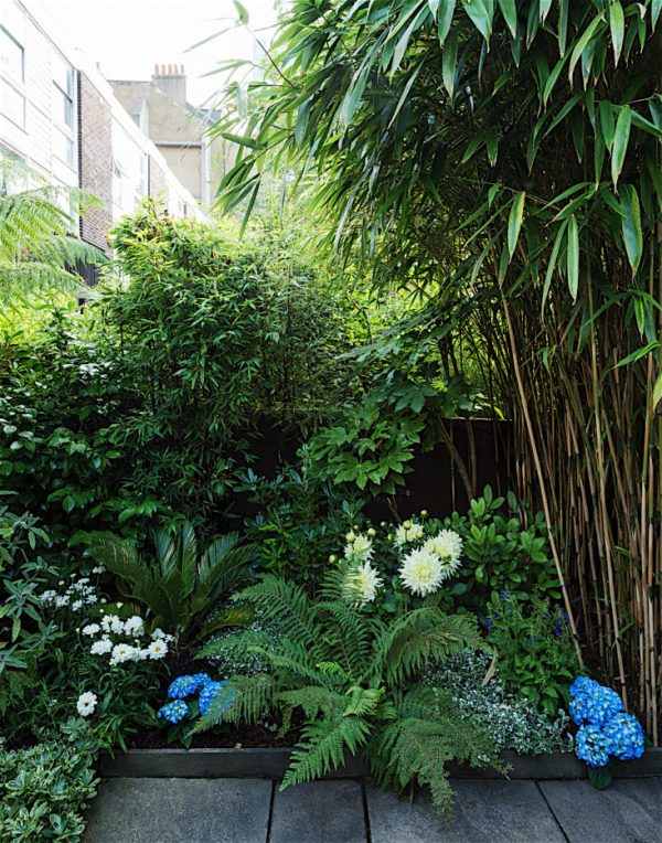 Tips to make your garden appear larger 7