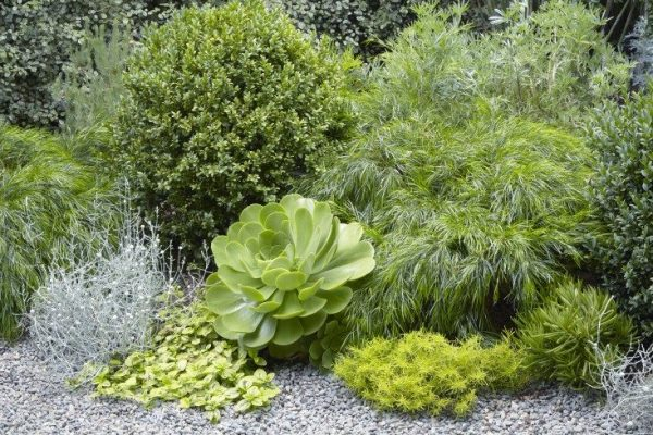 Tips to make your garden appear larger 11