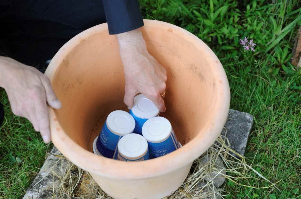 How to make a pot to attract the bees 2