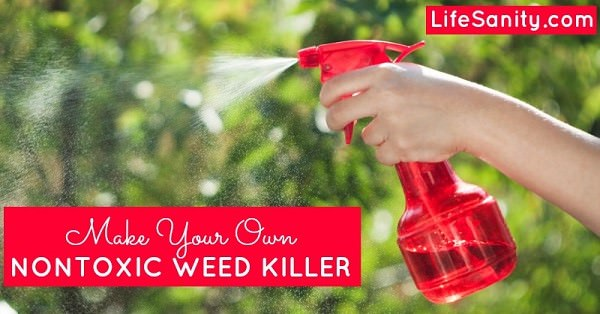 17 homemade solutions against weeds 13