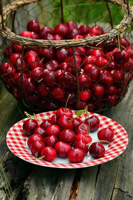How to grow cherries 4