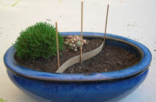 Build a patio in your garden in miniature 3