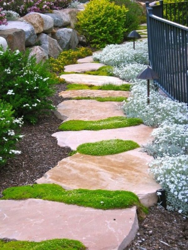Plants consume a high quantity for garden paths 4