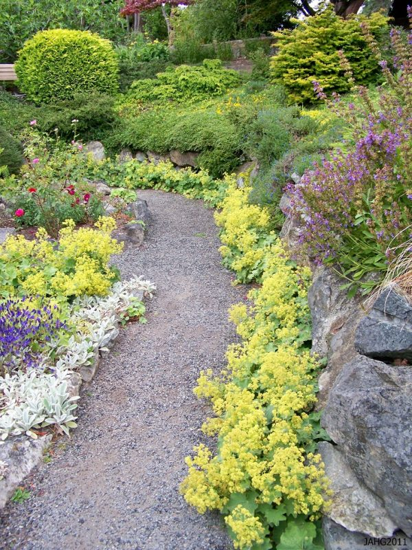 Plants consume a high quantity for garden paths 9